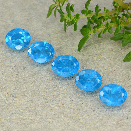0.4ct Oval Facet Deep Baby Blue Apatite Gem (ID: 488815)