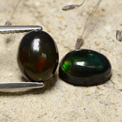 Multicolor Black Opal Gem - 1.5ct Oval Cabochon (ID: 473373)