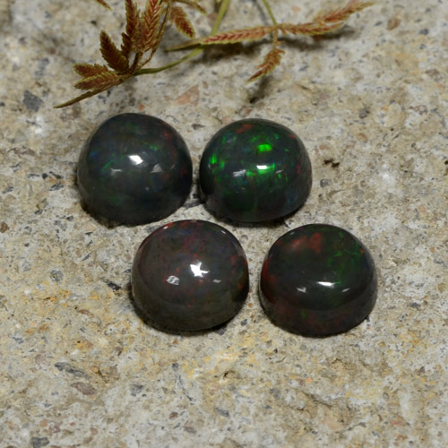 1.11 ct Cabochon rond Multicolore Opale Noir gemme 7.14 mm  (Photo A)