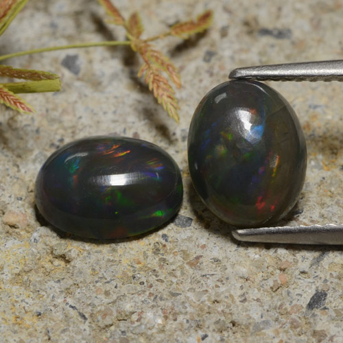 1.2ct Oval Cabochon Multicolor Black Opal Gem (ID: 473930)