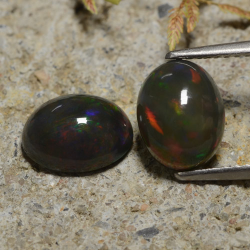 1.3ct Oval Cabochon Multicolor Black Opal Gem (ID: 473931)