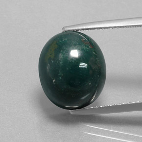 Multicolor Green Bloodstone Gem - 10.3ct Oval Cabochon (ID: 382671)
