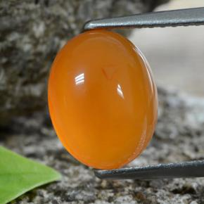 Orange Carnelian Gem - 2.9ct Oval Cabochon (ID: 469677)