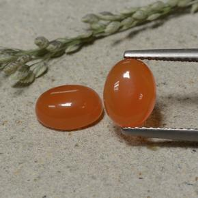 Light Orange Red Carnelian Gem - 1.4ct Oval Cabochon (ID: 496087)