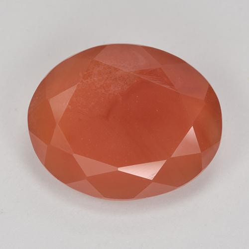 8.7ct Forma ovalada Fire Orange Cornalina Gema (ID: 513181)