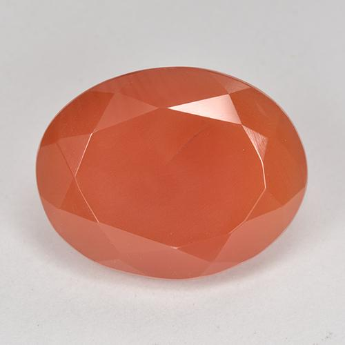 10.2ct Ovale sfaccettato Medium Orange Corniola Gem (ID: 513204)