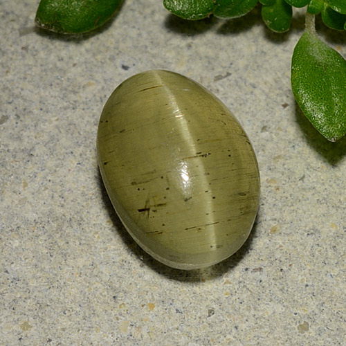 Green Cat's Eye Apatite Gem - 3ct Oval Cabochon (ID: 485996)