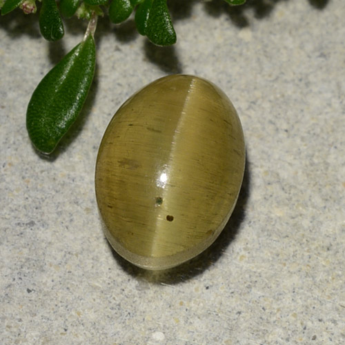 Brownish Yellow Cat's Eye Apatite Gem - 2.9ct Oval Cabochon (ID: 486009)