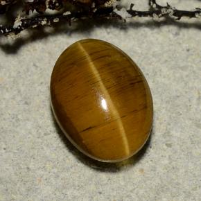 Yellowish Brown Cat's Eye Apatite Gem - 3.2ct Oval Cabochon (ID: 486168)