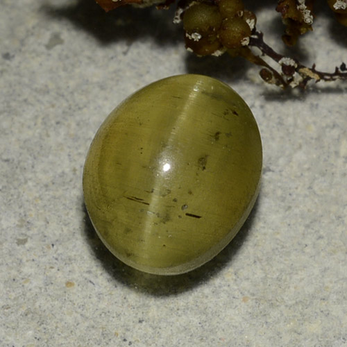 Golden Green Cat's Eye Apatite Gem - 3.7ct Oval Cabochon (ID: 486172)