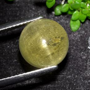 6.4ct Round Cabochon Greenish Yellow Cat's Eye Apatite Gem (ID: 494573)