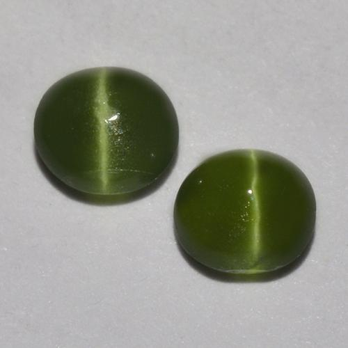 Earthy Green Cat's Eye Augite Gem - 0.2ct Round Cabochon (ID: 518342)