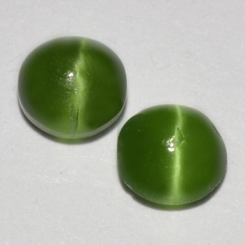 Green Cat's Eye Augite Gem - 0.3ct Round Cabochon (ID: 518349)