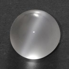 Smoky Multicolor Cat's Eye Moonstone Gem - 1.5ct Round Cabochon (ID: 500330)