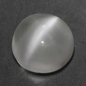 Smoky Multicolor Cat's Eye Moonstone Gem - 0.5ct Round Cabochon (ID: 500343)