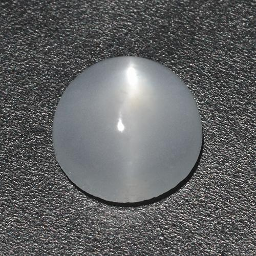 White Cat's Eye Moonstone Gem - 1.4ct Round Cabochon (ID: 513047)