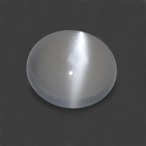 White Cat's Eye Moonstone Gem - 1.5ct Round Cabochon (ID: 515892)