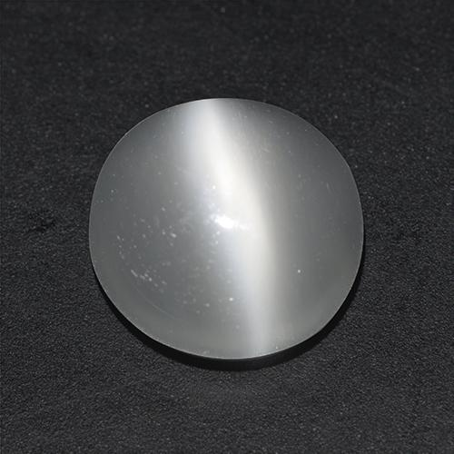 White Cat's Eye Moonstone Gem - 2.8ct Round Cabochon (ID: 516696)