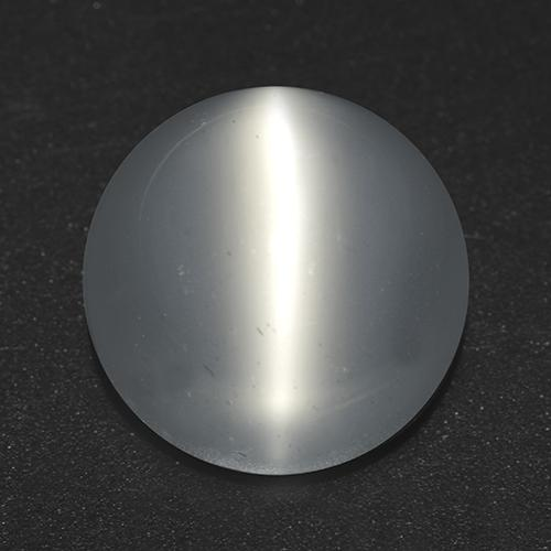 White Cat's Eye Moonstone Gem - 7.5ct Round Cabochon (ID: 517305)