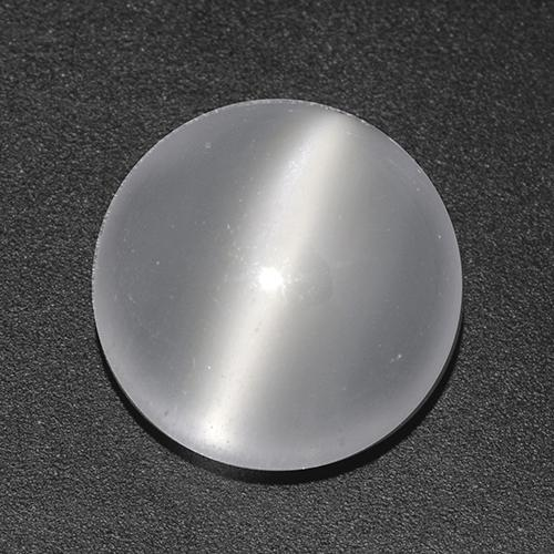 White Cat's Eye Moonstone Gem - 4ct Round Cabochon (ID: 517544)