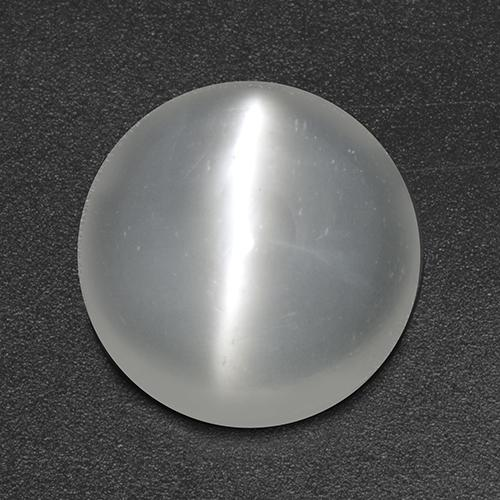 White Cat's Eye Moonstone Gem - 2.9ct Round Cabochon (ID: 517874)