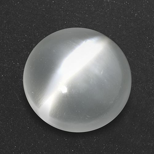 White Cat's Eye Moonstone Gem - 2.8ct Round Cabochon (ID: 517875)