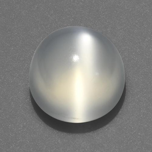 White Cat's Eye Moonstone Gem - 2.6ct Round Cabochon (ID: 519205)
