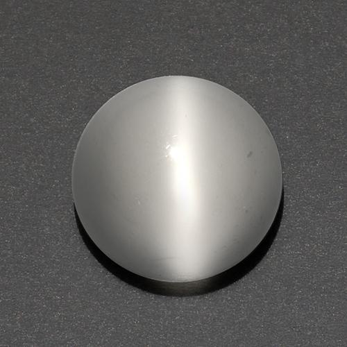 White Cat's Eye Moonstone Gem - 3.3ct Round Cabochon (ID: 519213)
