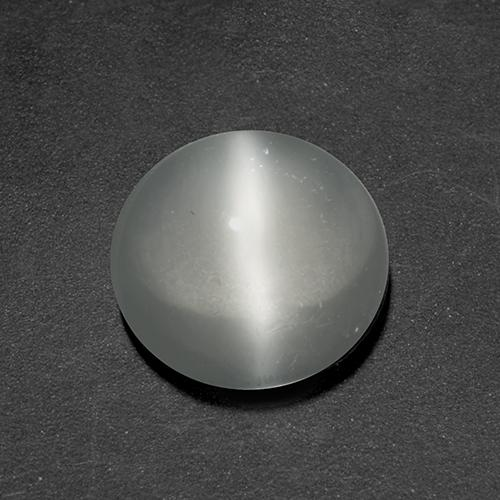 White Cat's Eye Moonstone Gem - 1.4ct Round Cabochon (ID: 519943)