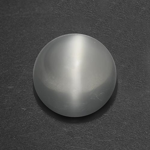 White Cat's Eye Moonstone Gem - 1.5ct Round Cabochon (ID: 519944)