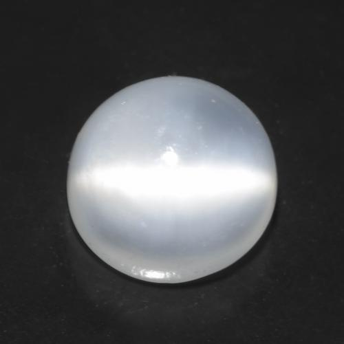 1.4ct Round Cabochon Translucent White Cat's Eye Moonstone Gem (ID: 545599)