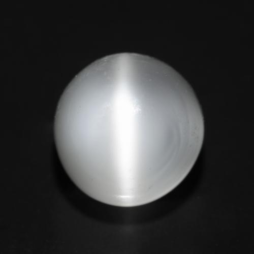 2.2ct Round Cabochon Translucent White Cat's Eye Moonstone Gem (ID: 546172)