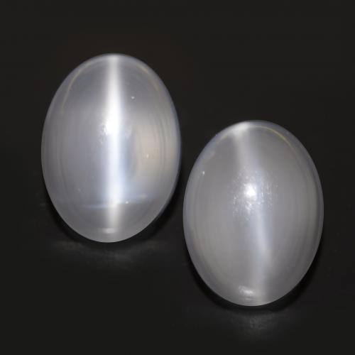 White Cat's Eye Moonstone Gem - 1.6ct Oval Cabochon (ID: 546324)