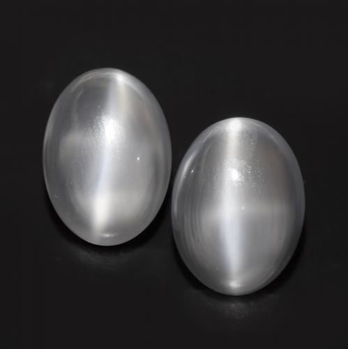 White Cat's Eye Moonstone Gem - 1.5ct Oval Cabochon (ID: 546326)