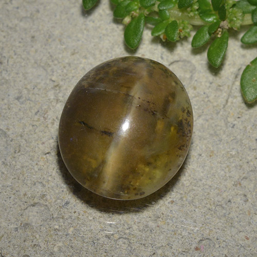 4.5ct Oval Cabochon Brown Cat's Eye Opal Gem (ID: 494039)