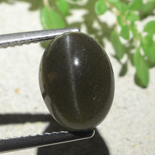 Black Cat's Eye Scapolite Gem - 5.2ct Oval Cabochon (ID: 484124)