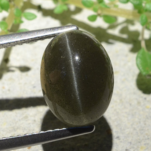 Black Cat's Eye Scapolite Gem - 4.7ct Oval Cabochon (ID: 484129)