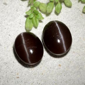 Brown Cat's Eye Scapolite Gem - 2.1ct Oval Cabochon (ID: 484946)