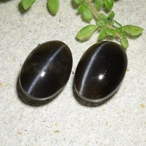 Black Cat's Eye Scapolite Gem - 1.6ct Oval Cabochon (ID: 484950)