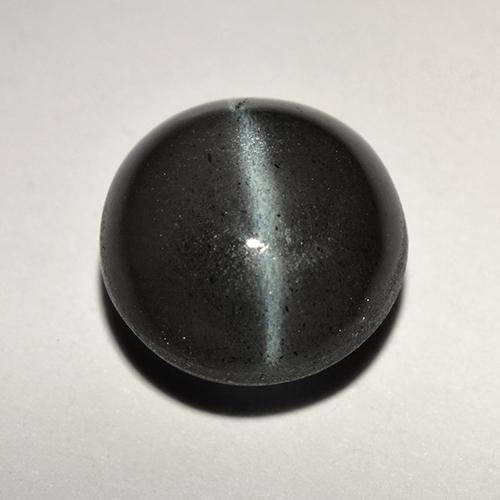 Black Cat's Eye Scapolite Gem - 2.8ct Round Cabochon (ID: 518708)