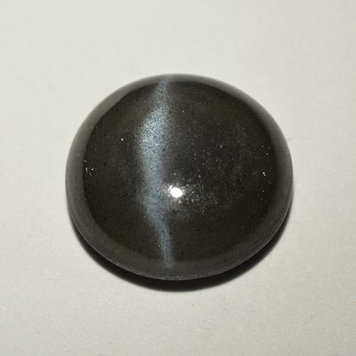 Black Cat's Eye Scapolite Gem - 2.6ct Round Cabochon (ID: 518709)