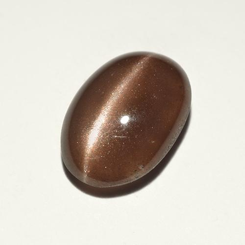 Warm Brown Cat's Eye Scapolite Gem - 2.4ct Oval Cabochon (ID: 518714)
