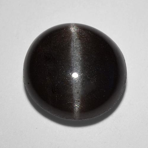 Black Cat's Eye Scapolite Gem - 3ct Round Cabochon (ID: 520171)