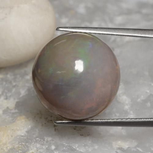 Multicolor Chocolate Opal Gem - 11.3ct Round Cabochon (ID: 450844)