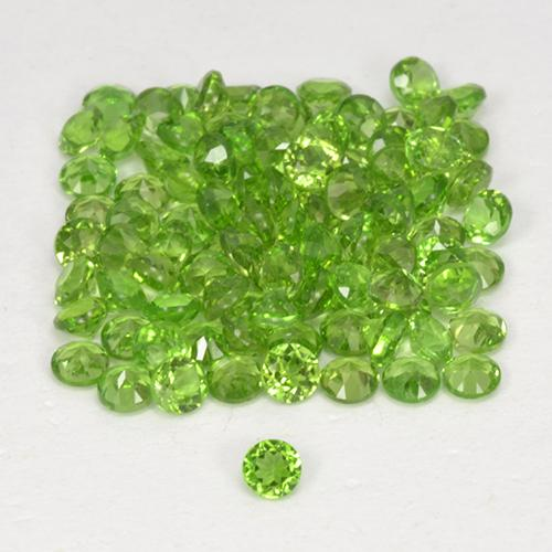 0.03 ct Facette ronde Vert éclatant Diopside Chrome gemme 1.71 mm  (Photo A)