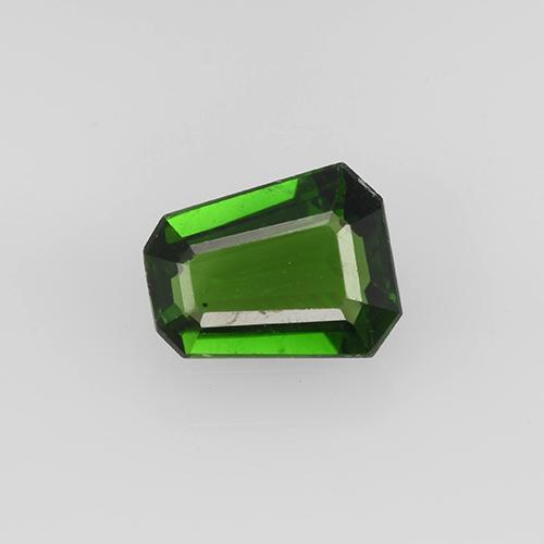 Earthy Green Chrome Tourmaline Gem - 0.4ct Trapezoid (ID: 504959)