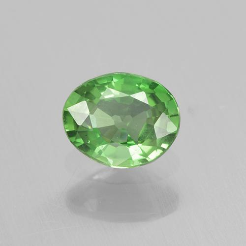 Lively Green Chrome Tourmaline Gem - 0.3ct Oval Facet (ID: 505106)