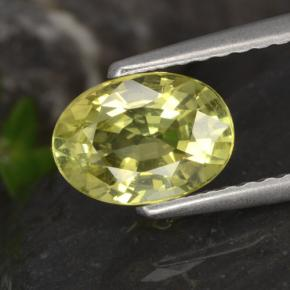 Earthy Yellow Chrysoberyl Gem - 1.3ct Oval Facet (ID: 366641)