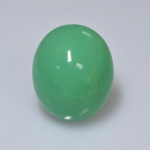 Green Chrysoprase Gem - 16.6ct Oval Cabochon (ID: 505420)