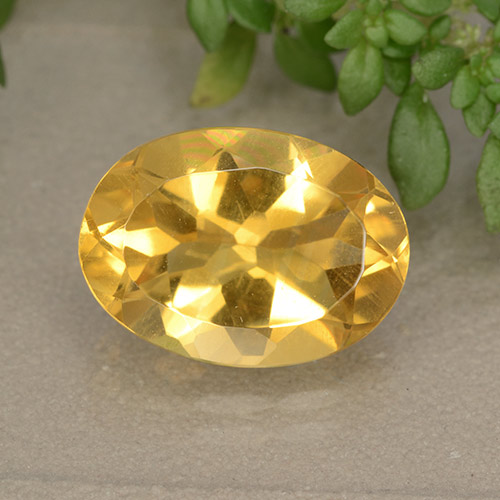 Medium Gold Citrina Gema - 5.4ct Forma ovalada (ID: 492526)